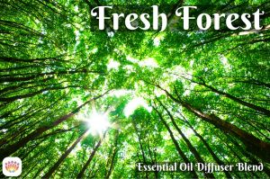 Fresh Forest Diffuser Blend