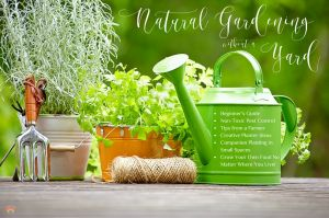 Natural Gardening Without A Yard
