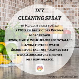 DIY EO Cleaner Transformational Essentials