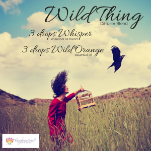 Wild Thing Essential Oil Diffuser Blend